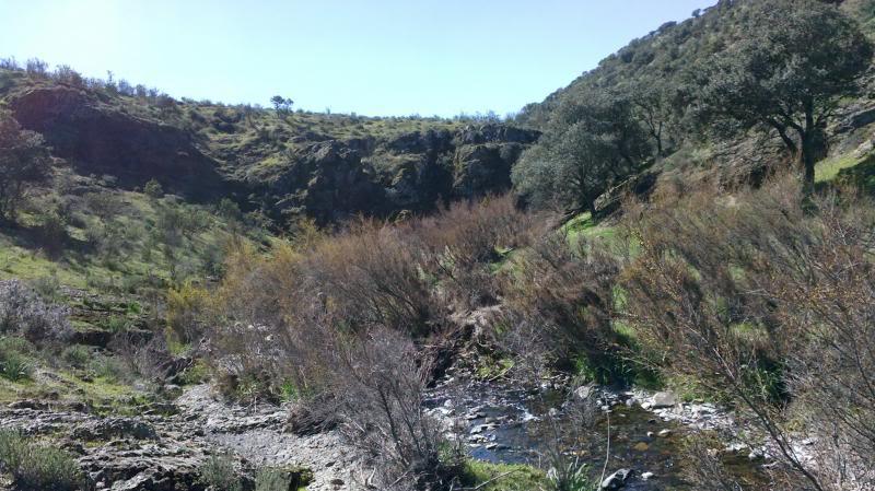 Bajando pòr el Arroyo Descuernavacas. 2014-04-06-079_zpsbadeaa4e