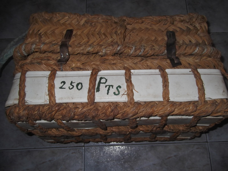 Barja antigua DSCF1530_zpsnpx50s28