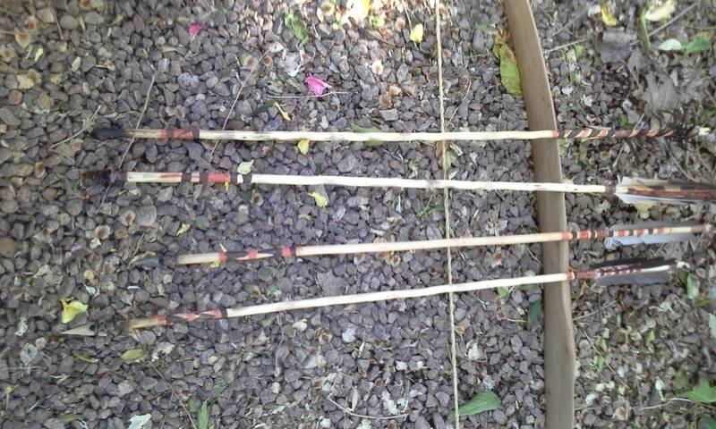 Pequeñas flechas indias. 20150521_183626_zps9s6rlvmb
