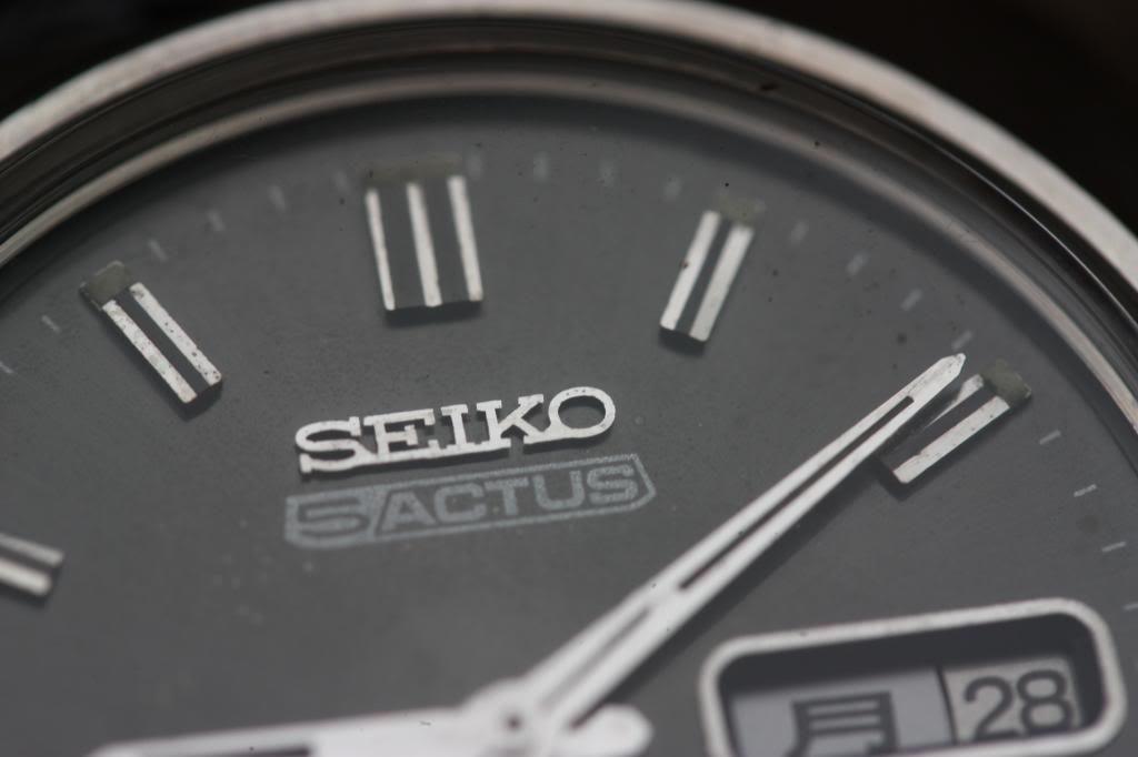 Mi colección de Seikos, parte 54 IMG_5717_zps30d01b53