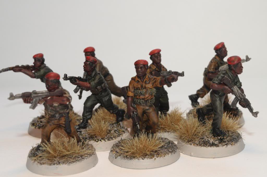 Guerre Africaine, mon projet moderne DSC_0010_zpsa8d2f1b7