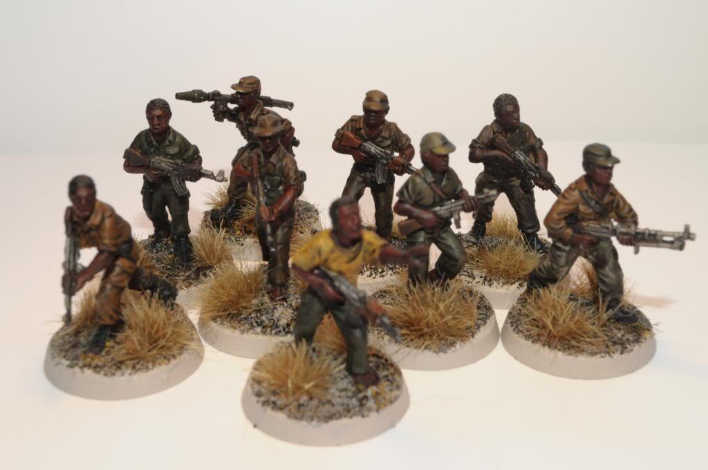 Guerre Africaine, mon projet moderne DSC_0018_zpsa1fb08e1
