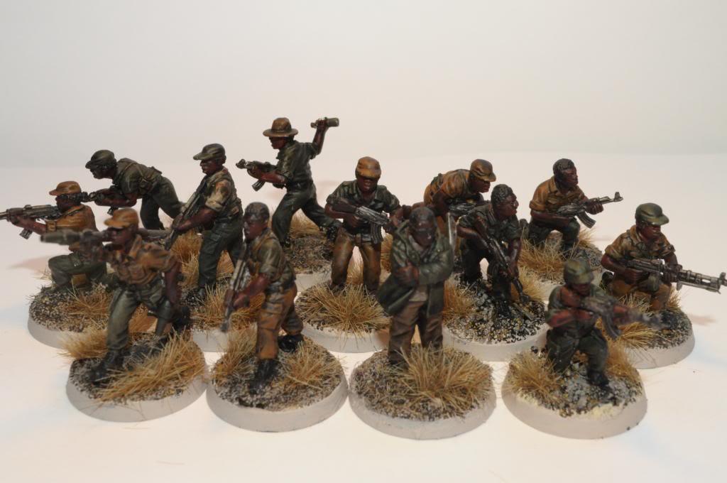 Guerre Africaine, mon projet moderne DSC_0019_zpsa4a86ee0