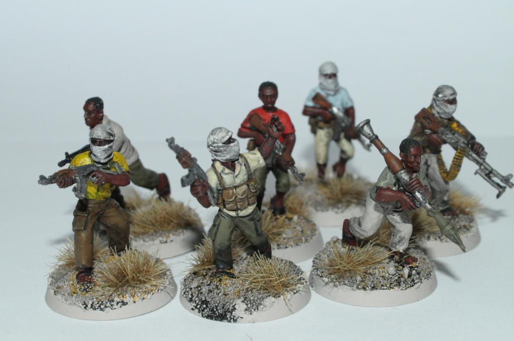 Guerre Africaine, mon projet moderne - Page 4 DSC_0003_zpsa688cdb0