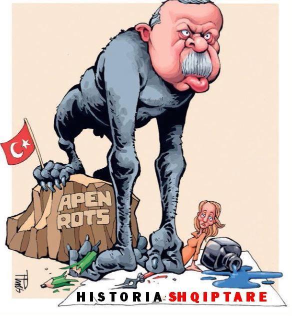 Rishikimi i teksteve të historisë në bashkëpunim me ekspertë turq është: - Faqe 3 Erdog_zpsgmmernpb