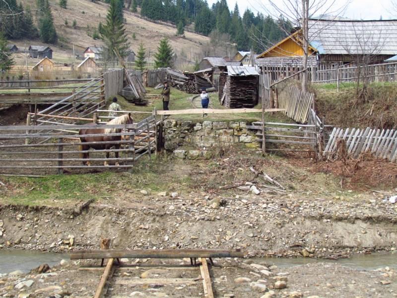 CFF Moldovita - Argel - Pagina 4 4670_zpsc62a1288