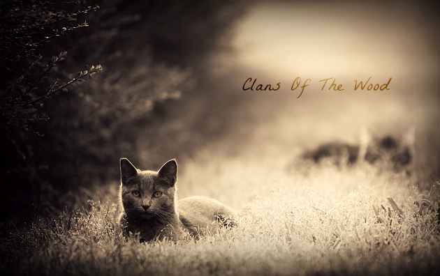 Clans Of The Wood