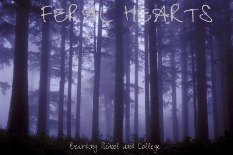 Feral Hearts-Yaoi 1d41d190-4951-4598-b85b-764efc9aa4a5_zps14fcf479