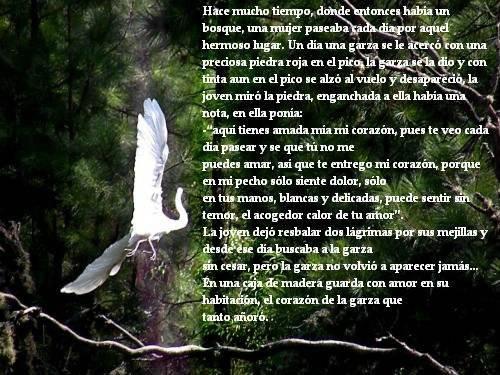La Garza.. Image_zps50981534