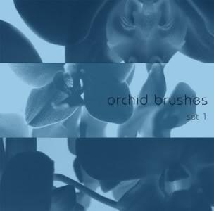 Brushlar ----Alıntıdır Color_Impact_465