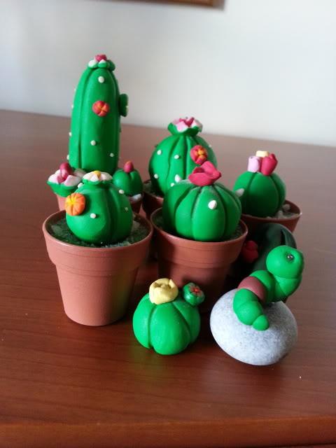 piante grasse 20130209_145833_zpsb5626cda