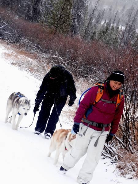 Claudia's husky birthday hike - Salt Lick Trail, Summit County *photo heavy* 10