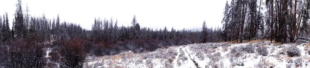 Claudia's husky birthday hike - Salt Lick Trail, Summit County *photo heavy* 31