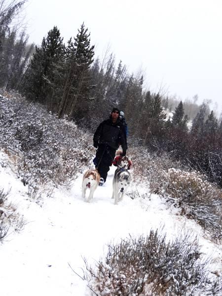 Claudia's husky birthday hike - Salt Lick Trail, Summit County *photo heavy* 38