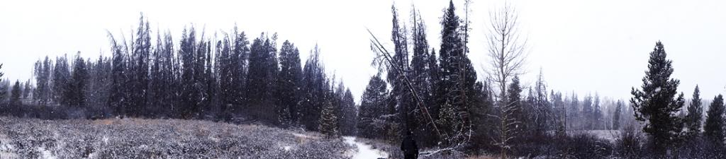 Claudia's husky birthday hike - Salt Lick Trail, Summit County *photo heavy* 47