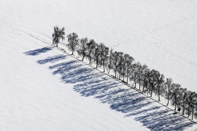 Cây mùa đông 0_a5369_c8be4153_orig_zps3f56b297