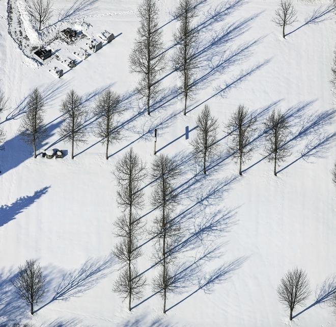 Cây mùa đông 0_a536e_edb87ffd_orig_zpsacaa1fe4