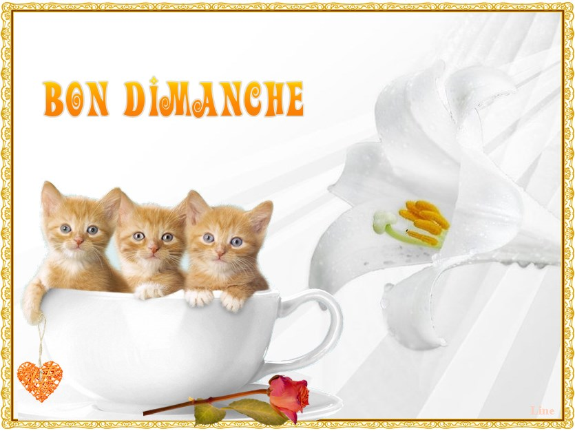 dimanche 2 Avril 993195__spring-lily_p_zps34f65378