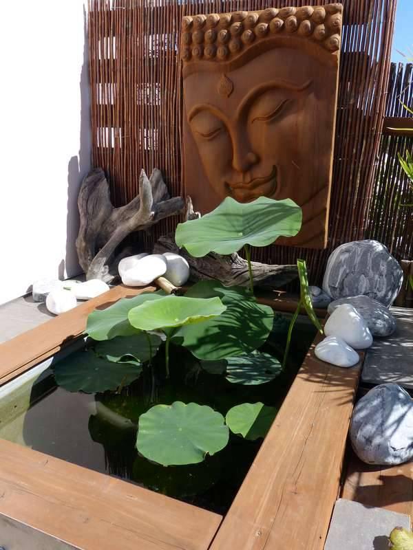 Bassin hors-sol de terrasse de Patrice_B - Page 3 Lotus_1_zpsxdkwbfck