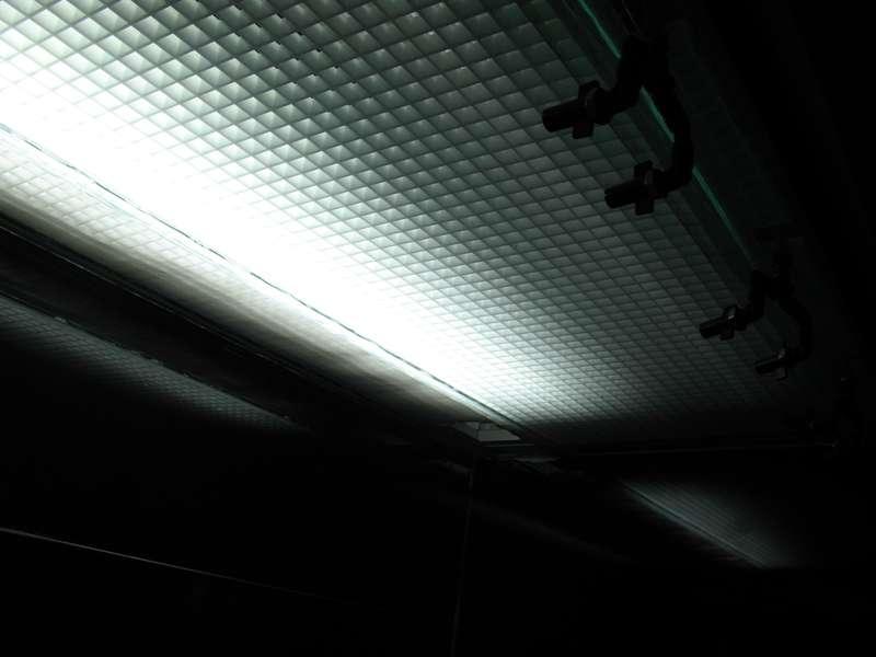 Paludarium de Patrice_B (L 120 x l60 x h112) Eclairage_un_tube_zpsbbd1df22
