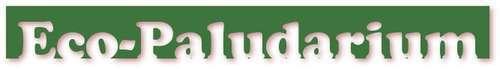 Paludarium (L50xl=45xH=60) pour crabes Geosesarma par Patrice_B Eco_palu_2_zpsshgqc7an
