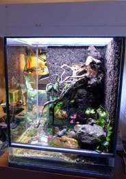 Paludarium (L50xl=45xH=60) pour crabes Geosesarma par Patrice_B Palu_petit_b_zps15zr1dly