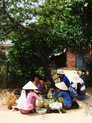 (6) Người Việt tiến vào phủ Hoài Nhơn 12_zps40428388