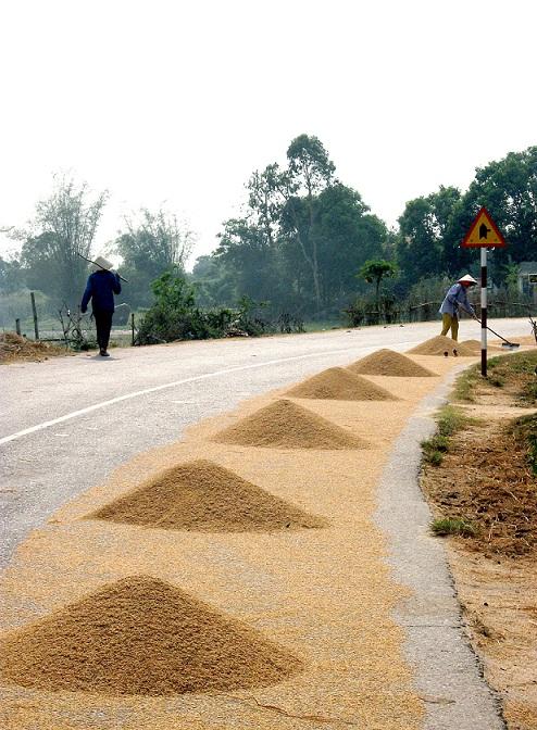 (6) Người Việt tiến vào phủ Hoài Nhơn 26_zps93712394