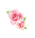 Rasca y gana Rosa-1000_zpsf9d7e5f0