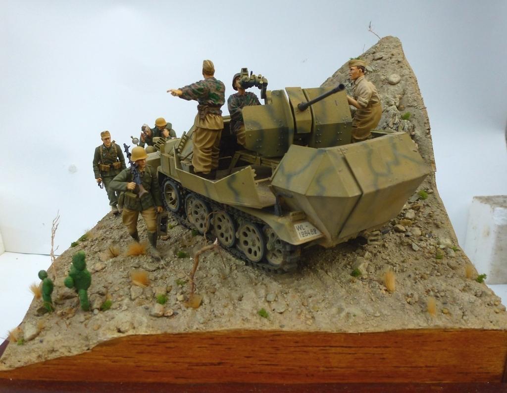 --Sdkfz- -251/17 (AFV) - Tunisie 1943 21h1_zpscftaal5e
