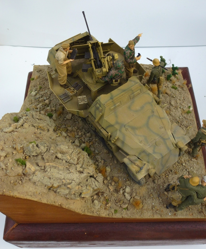 --Sdkfz- -251/17 (AFV) - Tunisie 1943 Dessus15h_zpsliakmxfi