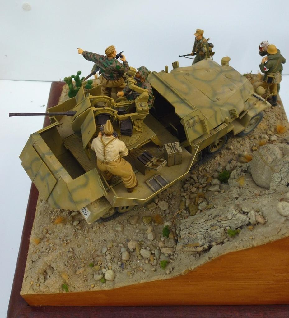 --Sdkfz- -251/17 (AFV) - Tunisie 1943 Dessus18h_zpsyu75llfi