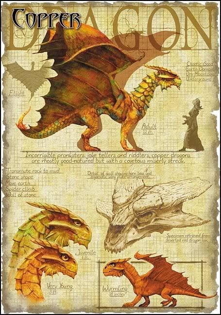 DRAGONS Copperdragon