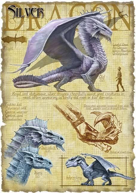 DRAGONS Silverdragon