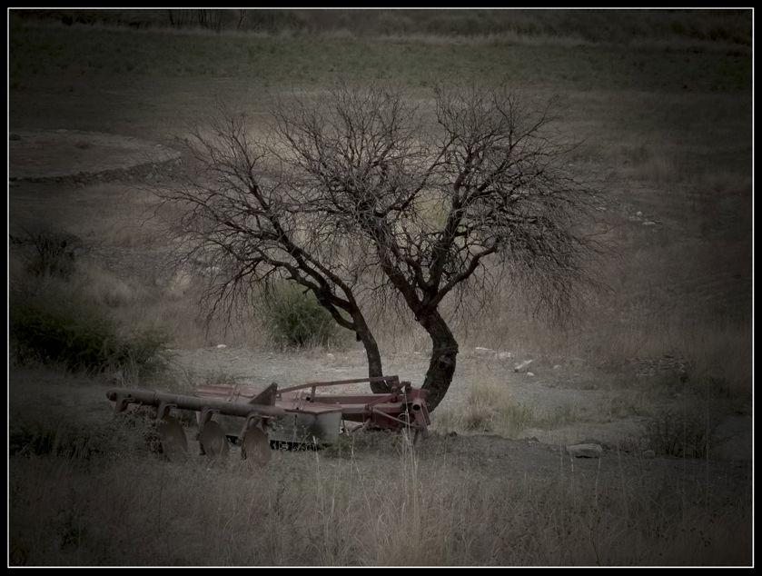 En un momento de descanso Encachiunpueblitodondesecosechaelpimentonenestemomentoestaendescanso_zpsc63be977