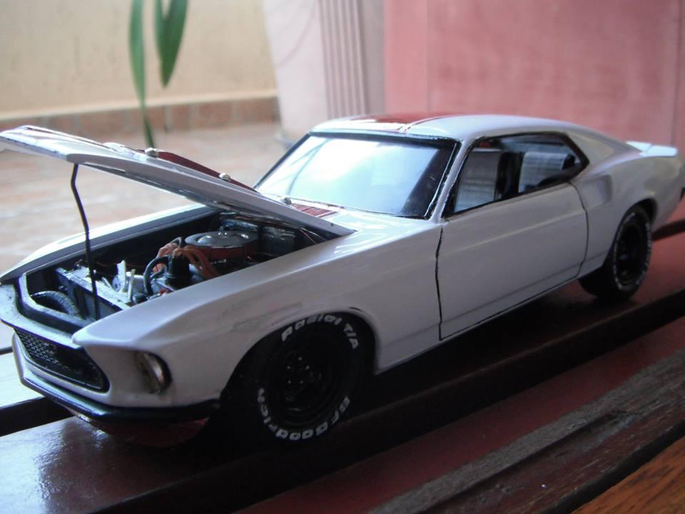 Mustang Street hawk - MPC 10888464_914395995246565_3994144654284535601_n_zps20cc1122