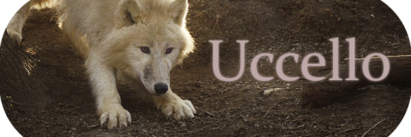 Uccello, wolf rpg. Banner_zps4a4ccc89