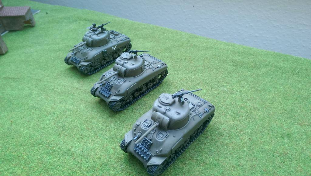 Trompeter's 1st Polish Armoured Division IMAG0228_zpsb152f2a2