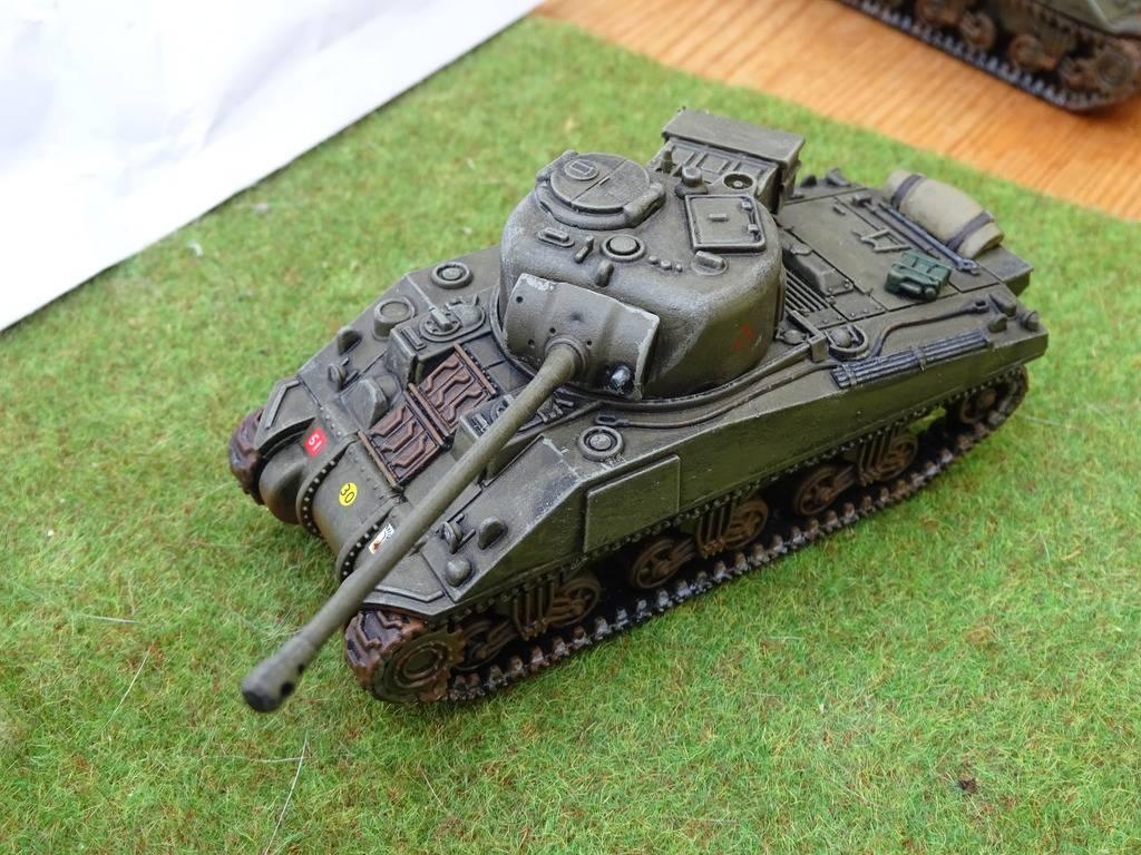 Trompeter's 1st Polish Armoured Division DSC00338_zpssrythmvq
