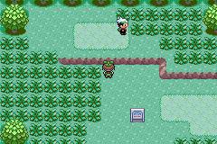 (Cancelled)Iffy's Hoenn Adventure PokemonEmerald_40_zps261960a8