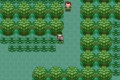 (Cancelled)Iffy's Hoenn Adventure PokemonEmerald_86_zps8059b827