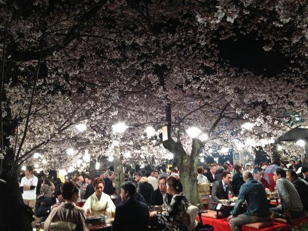 [Ẩm thực] 18 Món ăn trong các bữa tiệc Nhật Bản 11-hanami-spot-62_zps45ac3206