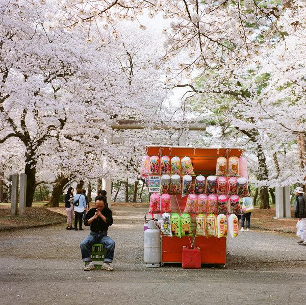 [Ẩm thực] 24 Món ăn đường phố Nhật Bản 20-break-sakura-75_zps0228056d
