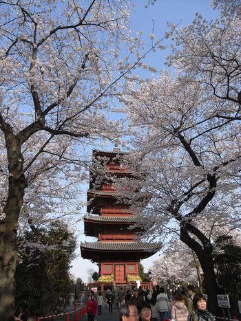 [Du lịch][Tin tức] 32 Ngôi chùa và Đền thờ ở Tokyo 20-ikegami-honmonji-tokyo-1182_zpsa6f98af7