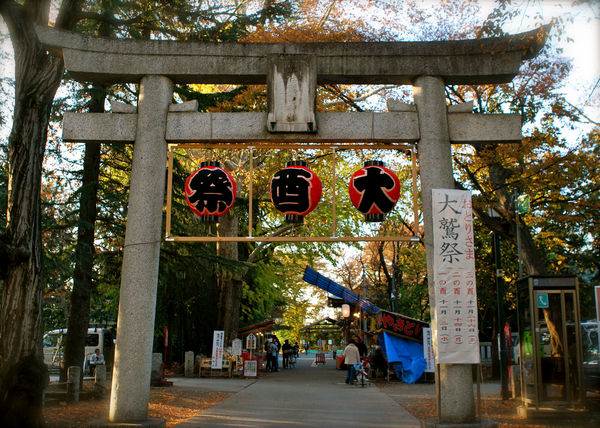 [Du lịch][Tin tức] 32 Ngôi chùa và Đền thờ ở Tokyo 24-Suwa-Shrine-Tokyo-1182_zpsce2809a2