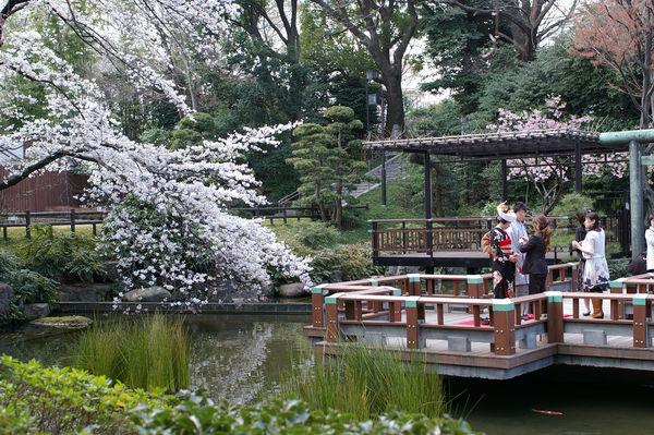 [Du lịch][Tin tức] 32 Ngôi chùa và Đền thờ ở Tokyo 27-togo-shrine-wedding-couple-1182_zps90847bc4