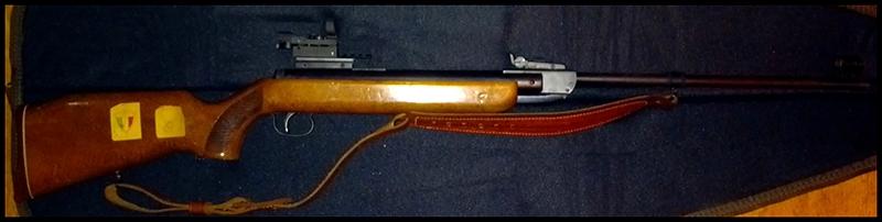 Une collection de plus... ARMES D'EPAULE DIANA35-01-RET_zps83d74512