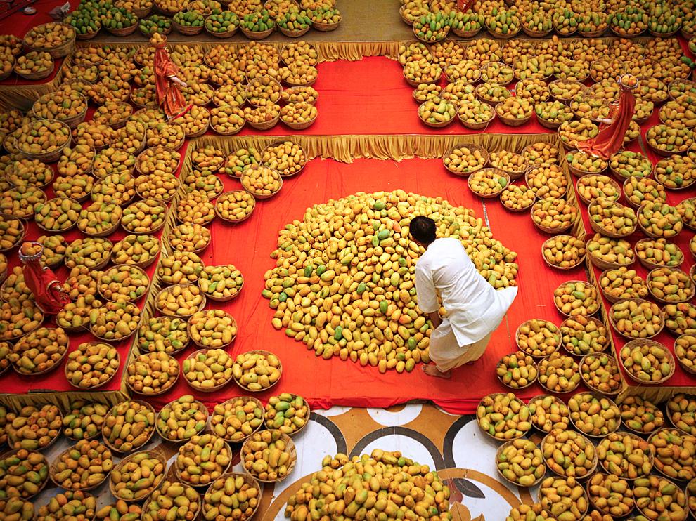 [News] Lễ hội xoài quốc tế Mangoes-hindu-festival_69001_990x742_zps979616b7