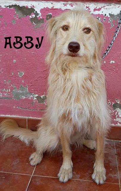 AU - Abby 18_zps8kc1qmwp