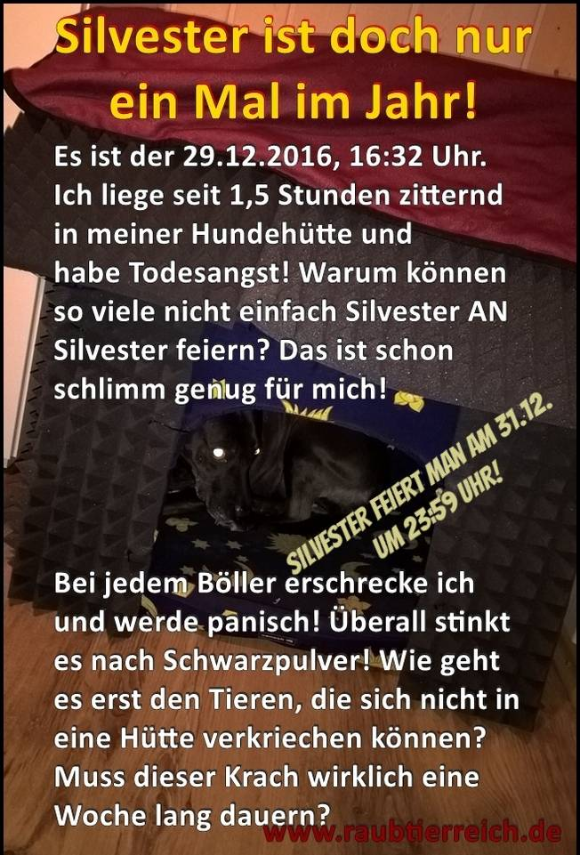 Silvester-Hundehütte 70ab3be7-0933-4510-8c3b-c41ff62e00db_zpsxs1ebrlx